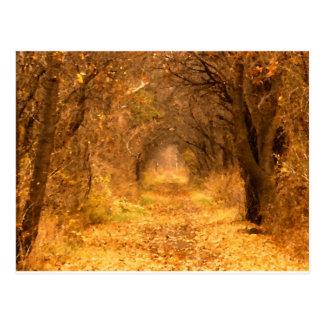 Qui sait où le chemin mène ? cartes postales