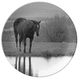 Quiet Reflectionz ~ Decorative Plate