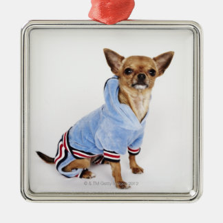 Quirky portrait of a Teacup Chihuahua 2 Silver-Colored Square Ornament