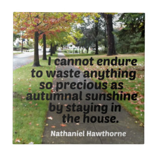 Quote by Hawthorne: I cannot endure to waste Ceramic Tile