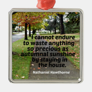 Quote by Hawthorne: I cannot endure to waste Silver-Colored Square Ornament