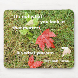Quote byThoreau: It's not what you look at that Mouse Pad