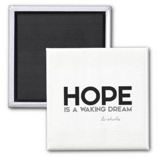 QUOTES: Aristotle: Hope: waking dream Magnet