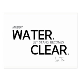 QUOTES: Lao Tzu: Muddy water Postcard