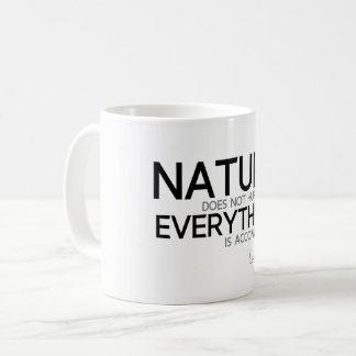 QUOTES: Lao Tzu: Nature, accomplished Coffee Mug