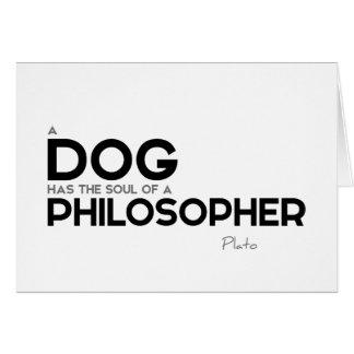 QUOTES: Plato: Dog, philosopher Card