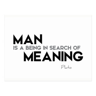 QUOTES: Plato: Search of meaning Postcard