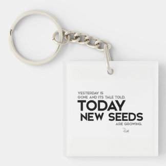 QUOTES: Rumi: New seeds are growing Keychain