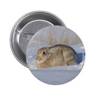 R0005 Cottontail Rabbit 2 Inch Round Button