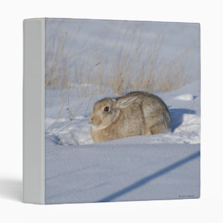 R0005 Cottontail Rabbit in Snow binder