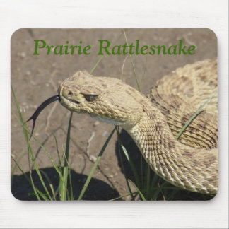 R0008 Prairie Rattlesnake Mouse Pad