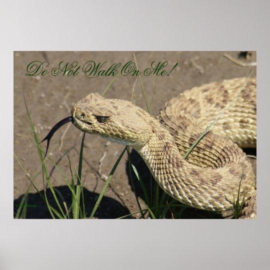 R0008 Prairie Rattlesnake Poster