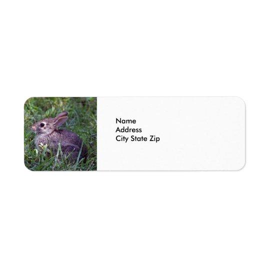 Rabbit 8603 return address label