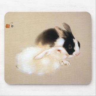Rabbit and Takeuchi 栖 鳳 'Usa many (rabbit)' Mouse Pad