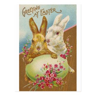 Rabbit Easter Greetings Vintage Postcard