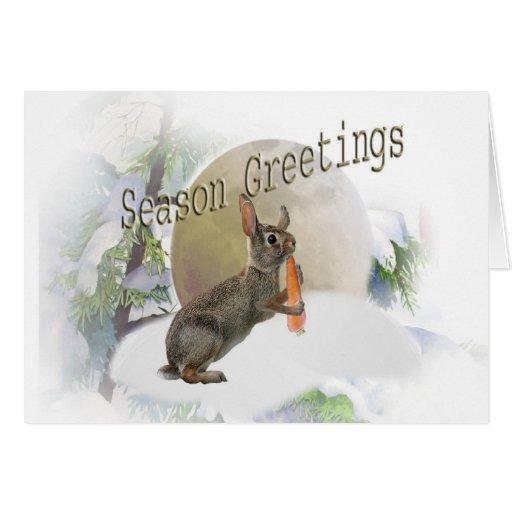 Rabbit Eating Carrot Season Greetings Greeting Cards
