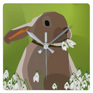 Rabbit eating snowdrops clocks