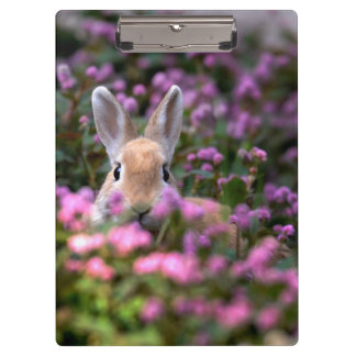Rabbit farm clipboard