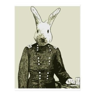 rabbit General Postcard