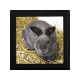 Rabbit Gift Box