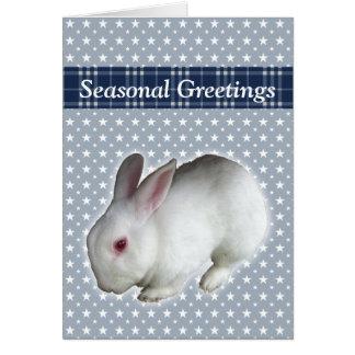 Rabbit Greeting Cards