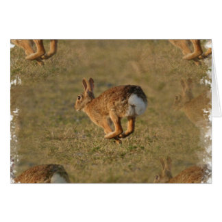 Rabbit Hopping Greeting Card