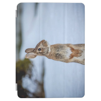 Rabbit in the snow iPad air cover