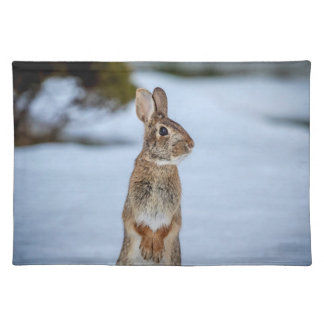 Rabbit in the snow placemat