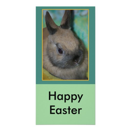 rabbit invite, Happy Easter Photo Card Template