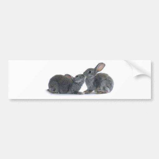 Rabbit Kiss Bumper Stickers