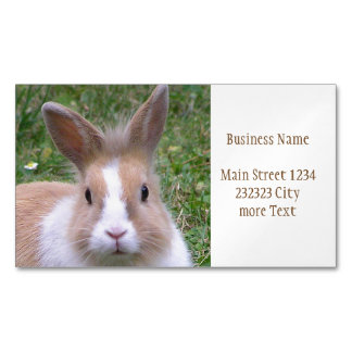 rabbit 	Magnetic business card
