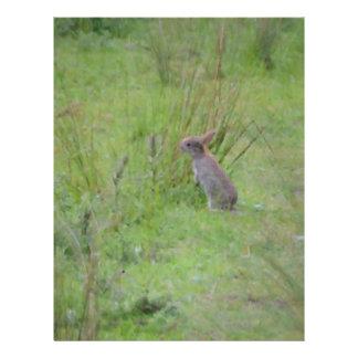 Rabbit Meadow Custom Letterhead