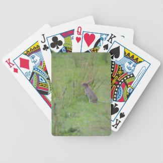 Rabbit Meadow Poker Deck