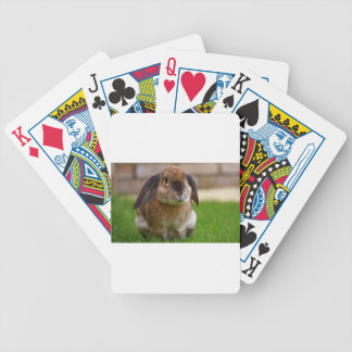 Rabbit minni lop bicycle playing cards
