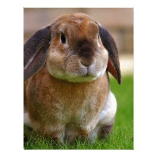 Rabbit minni lop letterhead