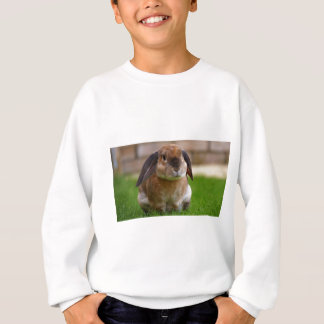 Rabbit minni lop sweatshirt