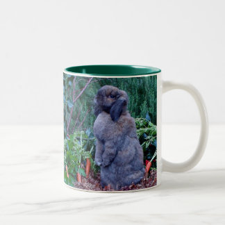 Rabbit Mug - Customized
