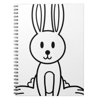 Rabbit Notebooks