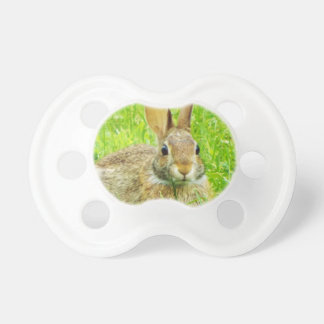 rabbit pacifier
