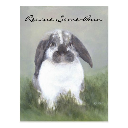 Rabbit Rescue Postcard