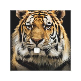 Rabbit tiger - tiger face - tiger head canvas print