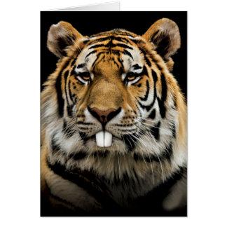 Rabbit tiger - tiger face - tiger head card