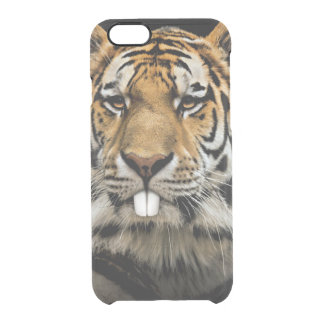 Rabbit tiger - tiger face - tiger head clear iPhone 6/6S case
