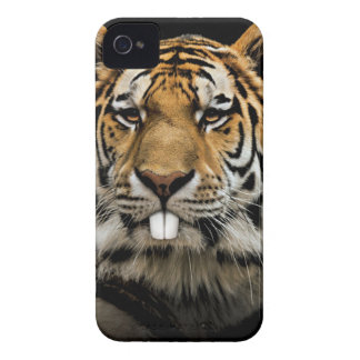 Rabbit tiger - tiger face - tiger head iPhone 4 case