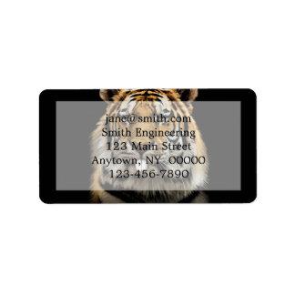 Rabbit tiger - tiger face - tiger head label