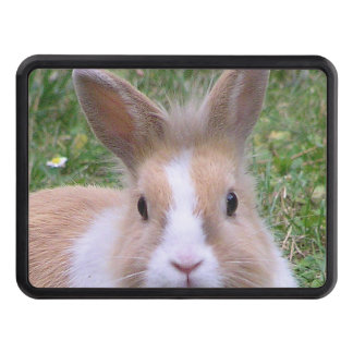 rabbit trailer hitch cover