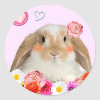 rabbit with flowers classic round sticker
