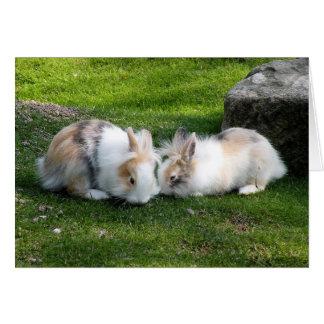Rabbits Greeting Card