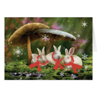 Rabbits in Wonderland Holiday Card