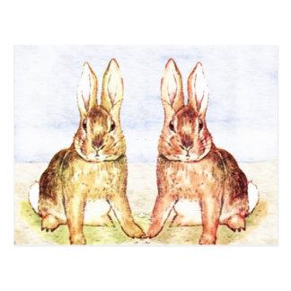 Rabbits Postcard